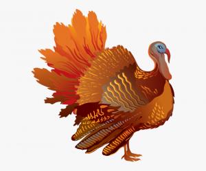 [0-6413_turkey-clipart-transparent-background-thanksgiving-turkey-transparent-background-300x249]